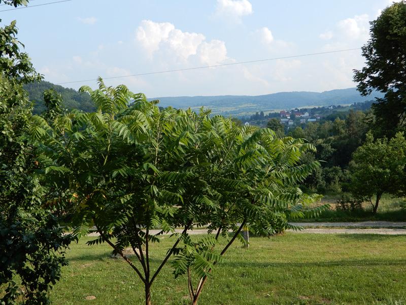 Agroturystyka widok z tarasu 3